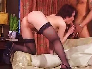 Pounded On The Sofa